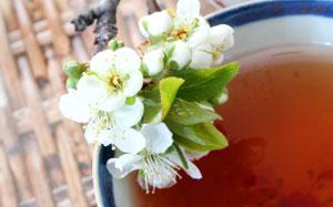 Chinesische Teetasse mit Blütendekoration