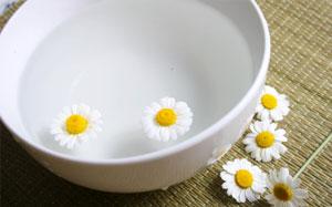 Weisse Schale gefüllt mit Wasser und Kamillenblüten