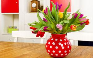 Ein bunter Strauss Tulpen steht in einer roten Vase mit weissen Punkten