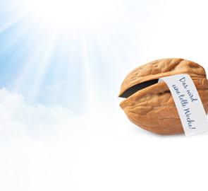 La noix du lundi de Henkel Lifetimes