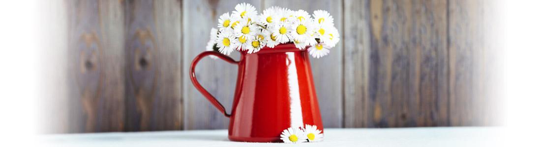 Eine rote Blumenvase mit Margeriten