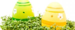 Ostern im Kressenest