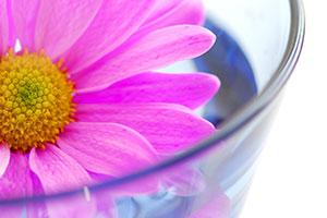 Bastelidee selbstgestaltete Vase mit schwimmender Blüte im Wasser