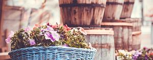 Gartendeko - 4 Ideen für kreative Pflanzgefässe