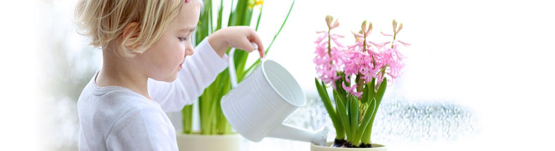 Mädchen gießt Zimmerpflanzen