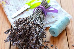 Lavendel mit Schere, Stoff und Garn