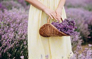 In 4 Schritten zum Lavendelsäckchen